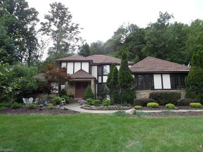 Brecksville, Broadview Heights Single Family Home For Sale: 9126 Avery Rd