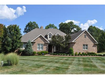 Zanesville Single Family Home For Sale: 1773 Longhill Dr