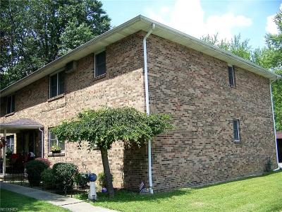 Youngstown Multi Family Home For Sale: 674 Cook Ave