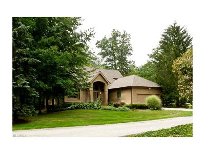 Chagrin Falls Condo/Townhouse For Sale: 248 Twin Creeks Dr