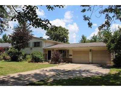 Canfield Single Family Home For Sale: 535 South Hillside Dr