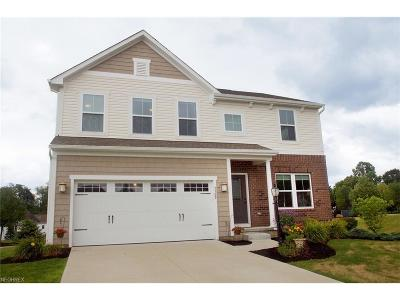 Mentor Single Family Home For Sale: 5569 Sand Dune Ct