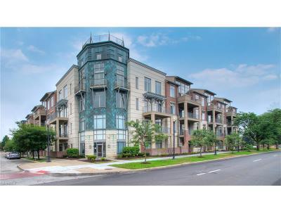 Shaker Heights Condo/Townhouse For Sale: 16800 Van Aken Blvd #410