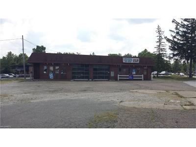 Commercial For Sale: 11260 State Rd