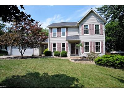 Seven Hills Single Family Home For Sale: 171 Old Rockside Rd