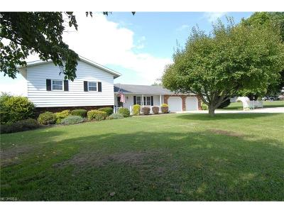 Muskingum County, Morgan County, Perry County, Guernsey County Single Family Home For Sale: 3645 & 3655 Boggs Rd