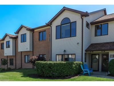 Mentor Condo/Townhouse For Sale: 7247 Village Dr