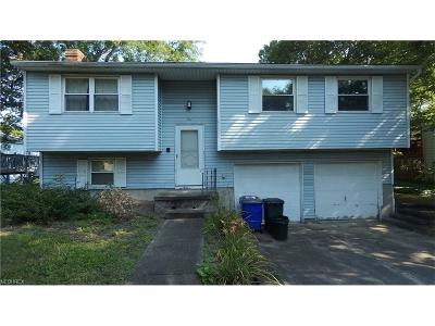 Kent Single Family Home For Sale: 947 Kevin Dr
