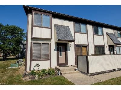 Willoughby Condo/Townhouse For Sale: 35228 North Turtle Trl #41-D