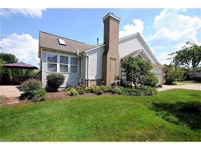 Twinsburg Single Family Home For Sale: 2973 Country Club Lane