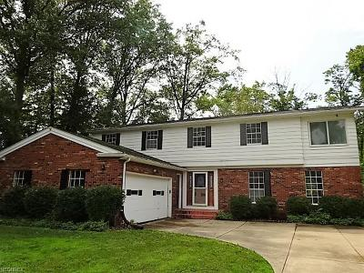 Westlake Single Family Home For Sale: 1176 Richmar Dr