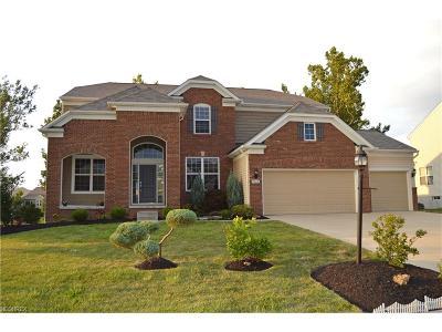 Schneider Reserve Ph 04 Single Family Home For Sale: 9362 Sagamore Cir