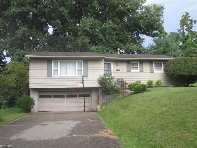 Zanesville Single Family Home For Sale: 4010 Dresden Rd