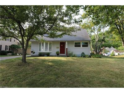 Summit County Single Family Home For Sale: 927 Barnes Ave