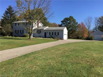 Chardon Single Family Home For Sale: 10745 Holi Dale Dr