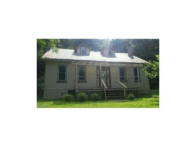 Muskingum County Single Family Home For Sale: 1162 Wayne Ave