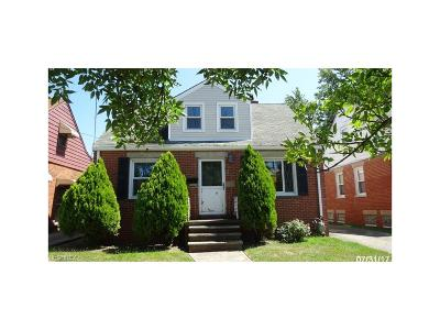Wickliffe Single Family Home For Sale: 30016 Robert St