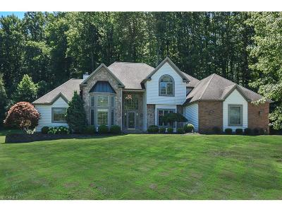Kirtland Single Family Home For Sale: 9655 Woodcroft Ct