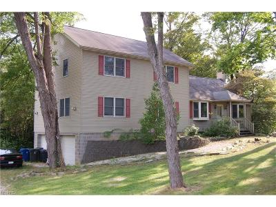 Summit County Single Family Home For Sale: 1164 Twinsburg Rd East