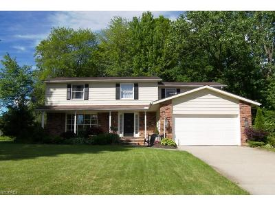 Solon OH Single Family Home For Sale: $267,500