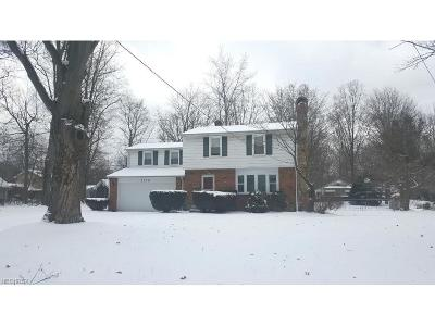Mentor Single Family Home For Sale: 7519 Murray Ave