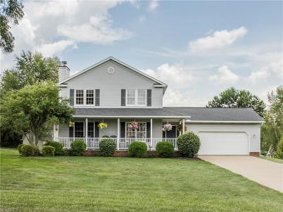 Single Family Home For Sale: 1074 Cayuga Trl Southwest