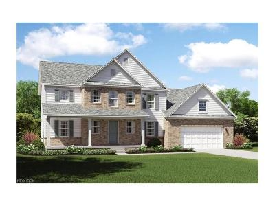 Licking County Single Family Home For Sale: 778 Francis Dr