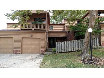 Brecksville, Broadview Heights Condo/Townhouse For Sale: 160 Kimrose Ln #160