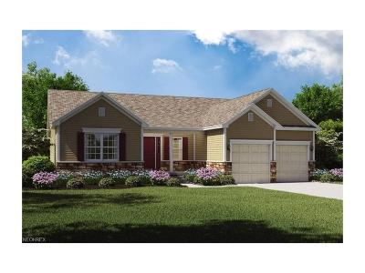 Licking County Single Family Home For Sale: 1320 Linnview Crossing