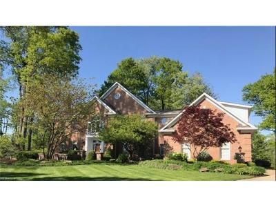 Strongsville Single Family Home For Sale: 17504 Willow Wood Dr
