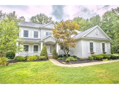 Brecksville, Broadview Heights Single Family Home For Sale: 1425 Honeygold Ln
