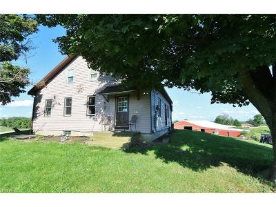 Morgan County Single Family Home For Sale: 6038 North State Route 376 Northwest