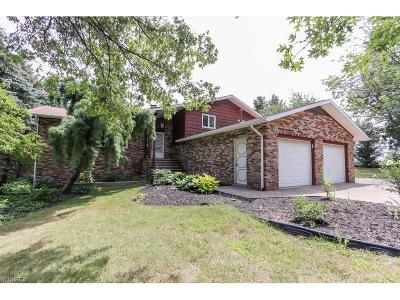 Brecksville, Broadview Heights Single Family Home For Sale: 10469 Highland Dr