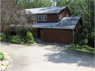 Kent Single Family Home For Sale: 7544 Skyview Dr