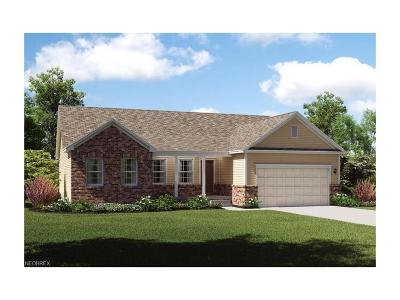 Licking County Single Family Home For Sale: 1304 Linnview Xing