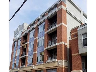 Cleveland Condo/Townhouse For Sale: 1951 West 26th St #516