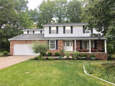 Brecksville, Broadview Heights Single Family Home For Sale: 3642 Ridge Park Dr