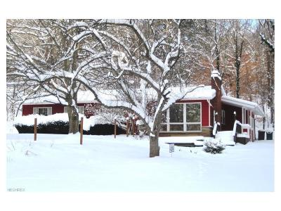 Summit County Single Family Home For Sale: 901 North Medina Line Rd