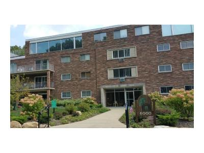Chagrin Falls Condo/Townhouse For Sale: 6000 Nob Hill Dr #F105