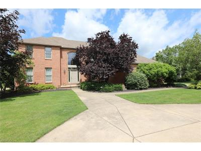 Canfield Single Family Home For Sale: 5395 Cloisters Dr