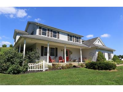 Muskingum County Single Family Home For Sale: 6193 Branch Flat Rd