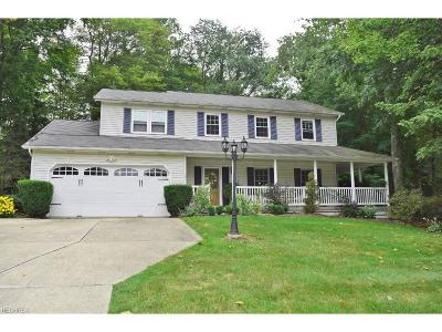Chagrin Falls Single Family Home For Sale: 18185 Rolling Brook Dr