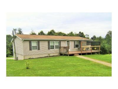 Guernsey County Single Family Home For Sale: 67275 Incidental Ln