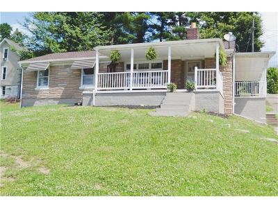 Single Family Home For Sale: 141 Hill Dr