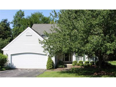 Geauga County Condo/Townhouse For Sale: 255 Manor Brook Dr
