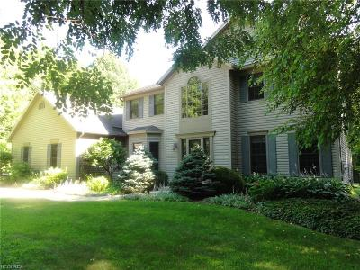 Single Family Home For Sale: 11482 State St Northeast