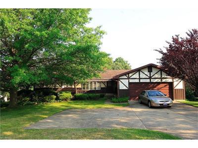 Mentor Single Family Home For Sale: 10119 Hoose Rd