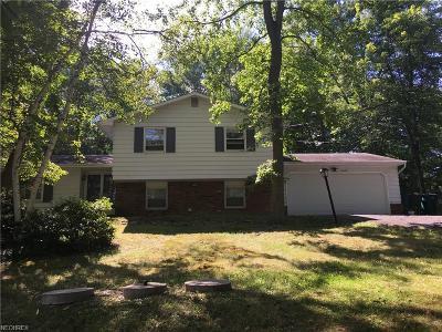 Moreland Hills Single Family Home For Sale: 3870 Ellendale Rd