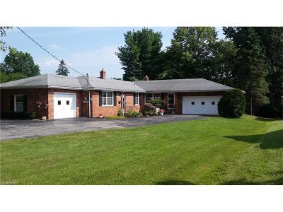 Youngstown Single Family Home For Sale: 321 Meadowbrook Ave