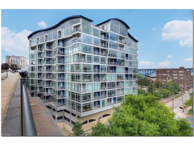 Cleveland Condo/Townhouse For Sale: 1237 Washington Ave #1209